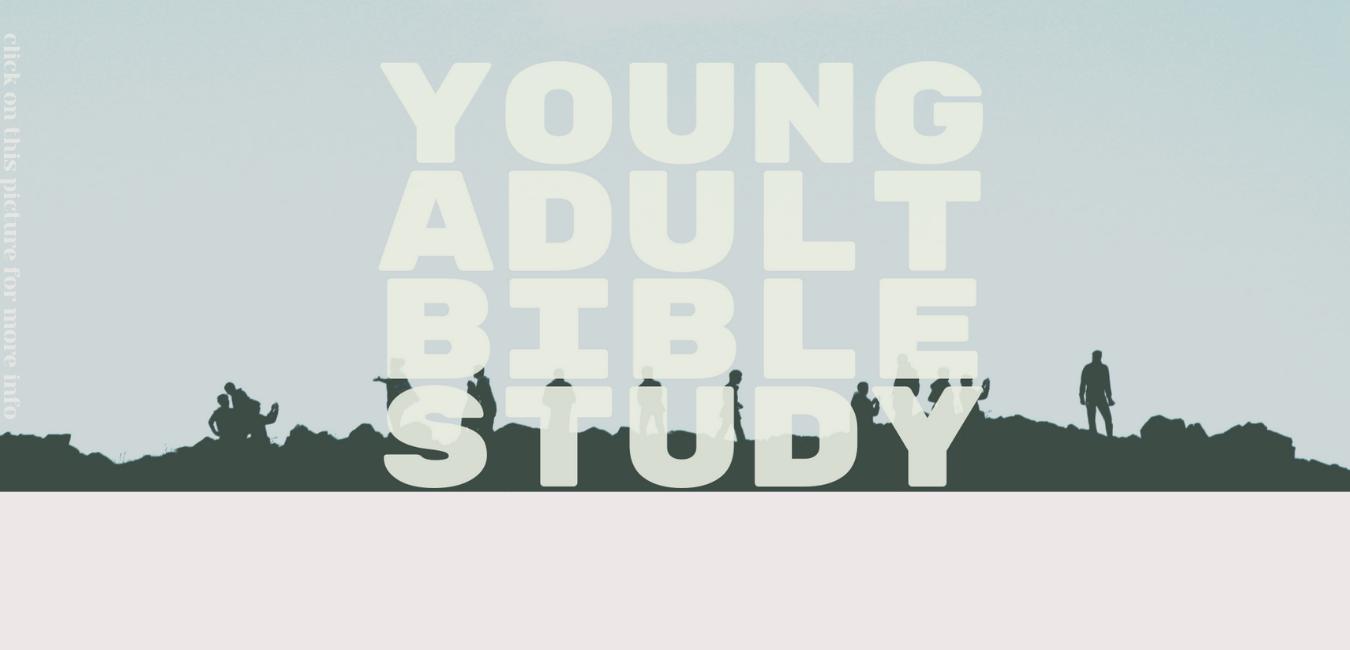 YA-Bible-Study-Website